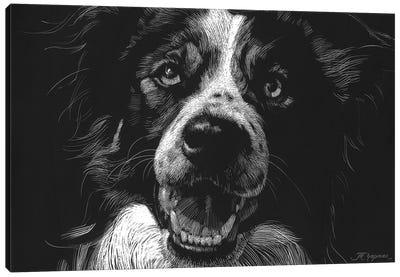 Canine Scratchboard XVIII Canvas Art Print