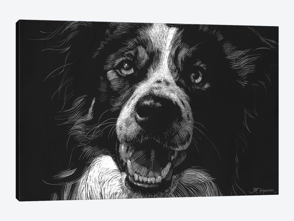 Canine Scratchboard XVIII by Julie T. Chapman 1-piece Art Print