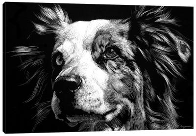 Canine Scratchboard XX Canvas Art Print