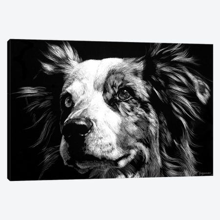 Canine Scratchboard XX Canvas Print #JTC65} by Julie T. Chapman Canvas Artwork