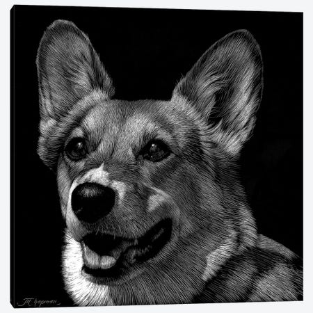 Canine Scratchboard XXIX Canvas Print #JTC67} by Julie T. Chapman Canvas Art