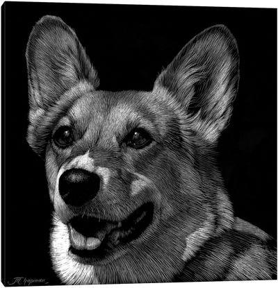 Canine Scratchboard XXIX Canvas Art Print