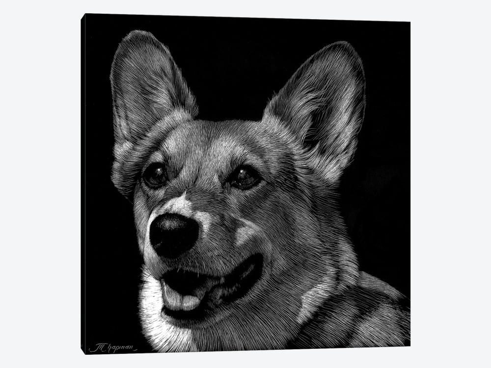 Canine Scratchboard XXIX by Julie T. Chapman 1-piece Canvas Art