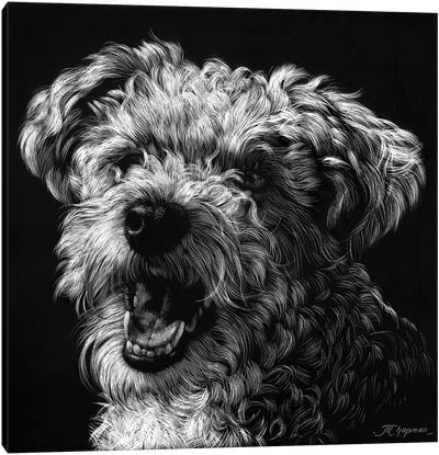 Canine Scratchboard XXV Canvas Art Print