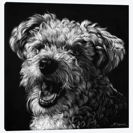 Canine Scratchboard XXV 3-Piece Canvas #JTC68} by Julie T. Chapman Canvas Print