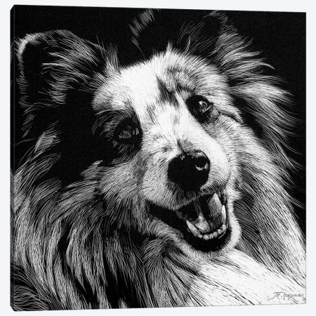Canine Scratchboard XXVI Canvas Print #JTC69} by Julie T. Chapman Canvas Art Print