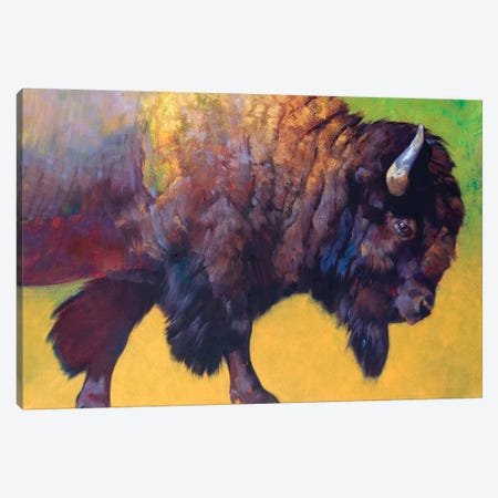 Da Bull Canvas Print #JTC70} by Julie T. Chapman Canvas Wall Art