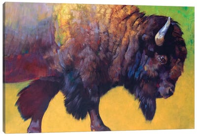 Da Bull Canvas Art Print