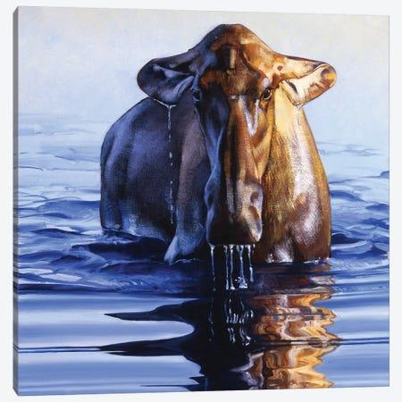 Dreadnought 3-Piece Canvas #JTC71} by Julie T. Chapman Canvas Artwork