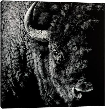Enduring III Canvas Art Print