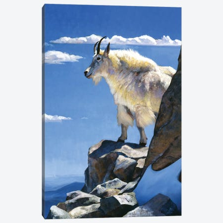 Rocky Mountain High Canvas Print #JTC77} by Julie T. Chapman Art Print