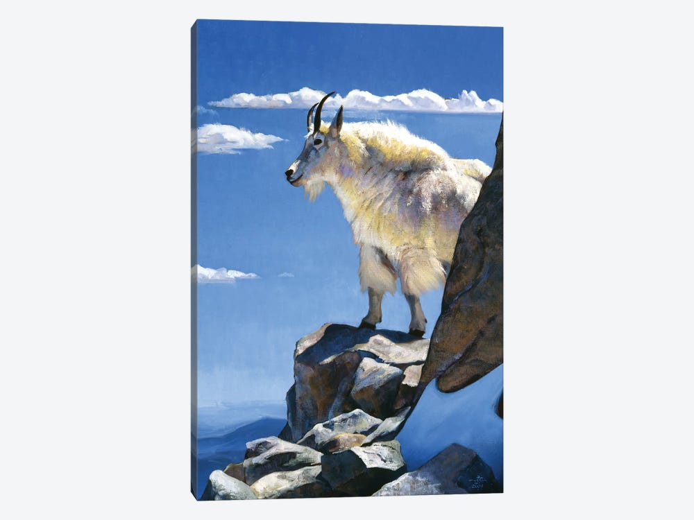 Rocky Mountain High by Julie T. Chapman 1-piece Art Print