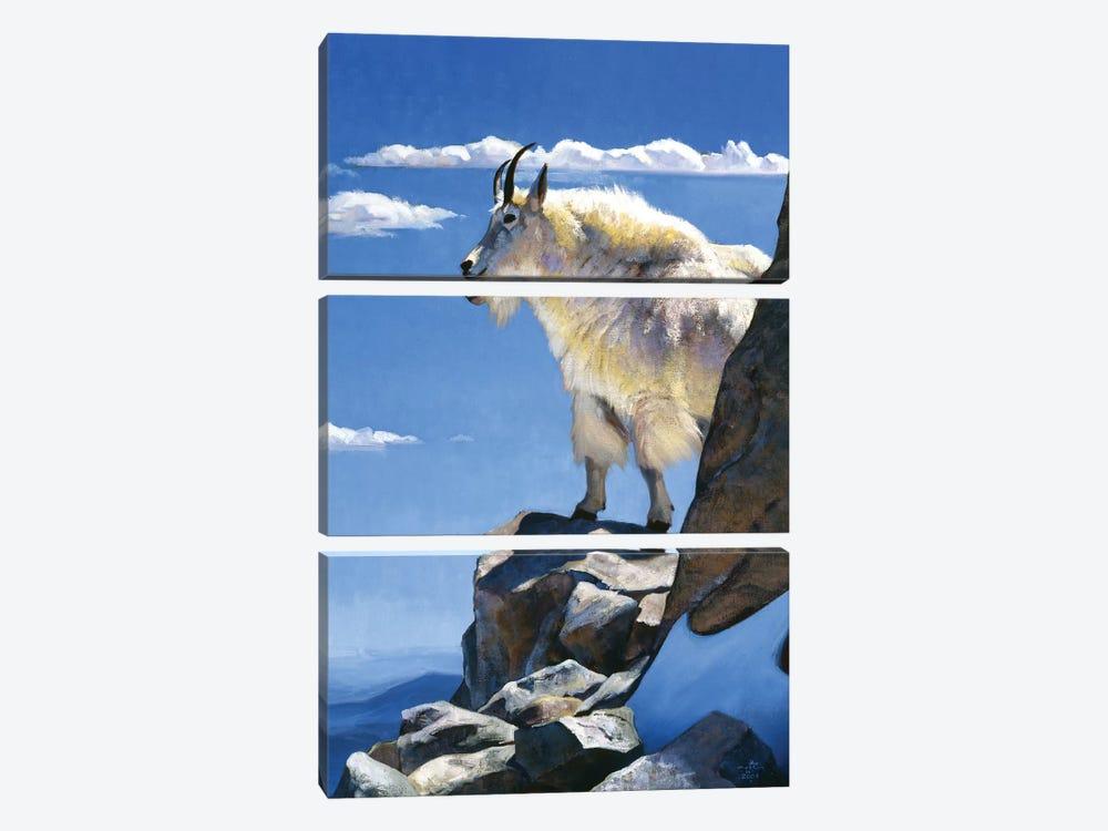 Rocky Mountain High by Julie T. Chapman 3-piece Canvas Art Print