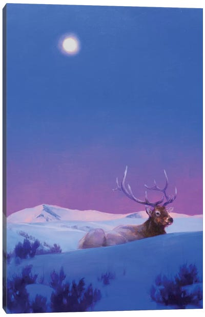 The Gift Canvas Art Print