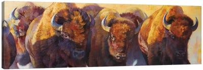 Wall Of Thunder Canvas Art Print