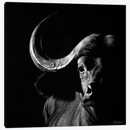 Wildlife Scratchboards VIII Canvas Print #JTC81} by Julie T. Chapman Art Print