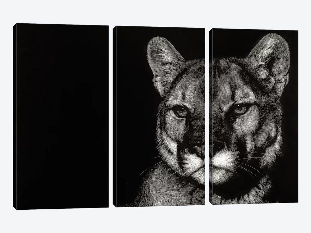 Nightfall by Julie T. Chapman 3-piece Canvas Print