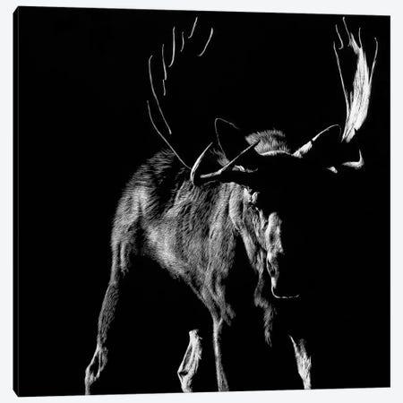 Bullish Canvas Print #JTC93} by Julie T. Chapman Canvas Wall Art