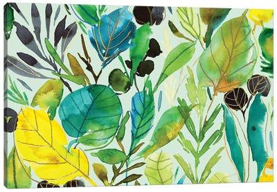 Fancy Florals II Canvas Art Print