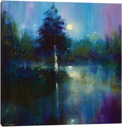 The Secret Lake Canvas Art Print