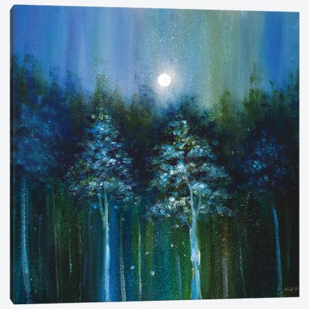 Ethereal Woods Canvas Print #JTL104} by Jennifer Taylor Canvas Art Print