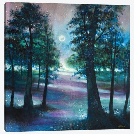 Moonlight Serenade II Canvas Print #JTL110} by Jennifer Taylor Canvas Art Print