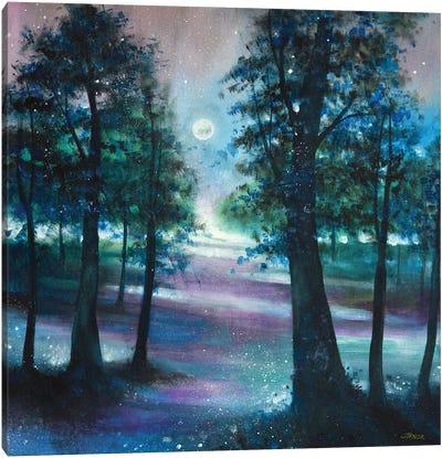 Moonlight Serenade II Canvas Art Print