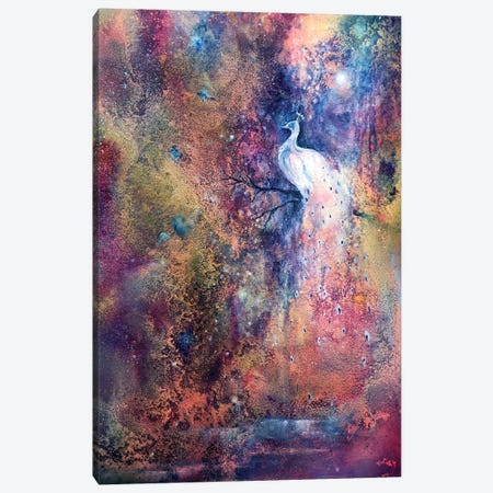 Peacock Canvas Print #JTL24} by Jennifer Taylor Canvas Art Print