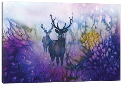 Woodland Watchers Canvas Art Print