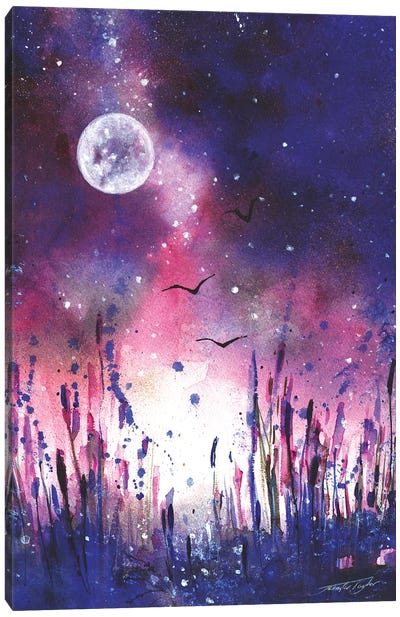 Moonlight Kingdom Canvas Art Print