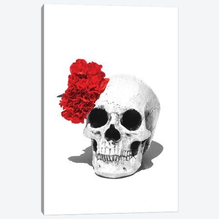 Skull & Red Carnation Black & White Canvas Print #JTN100} by Jonathan Brooks Canvas Art Print