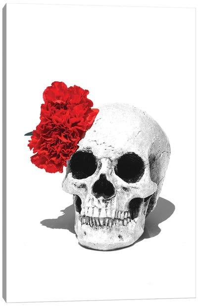 Skull & Red Carnation Black & White Canvas Art Print