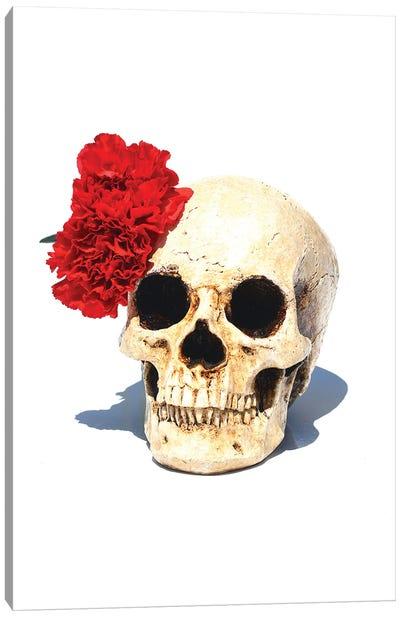 Skull & Red Carnation Canvas Art Print