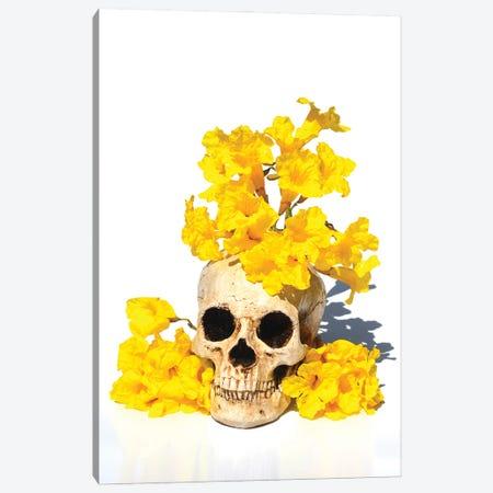 Skull& Tabebuia Canvas Print #JTN102} by Jonathan Brooks Canvas Art Print