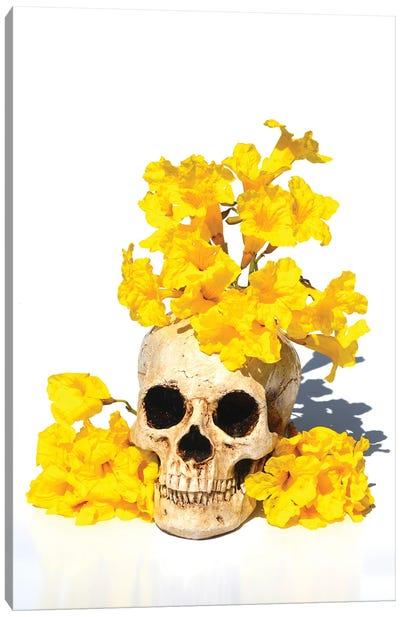 Skull& Tabebuia Canvas Art Print