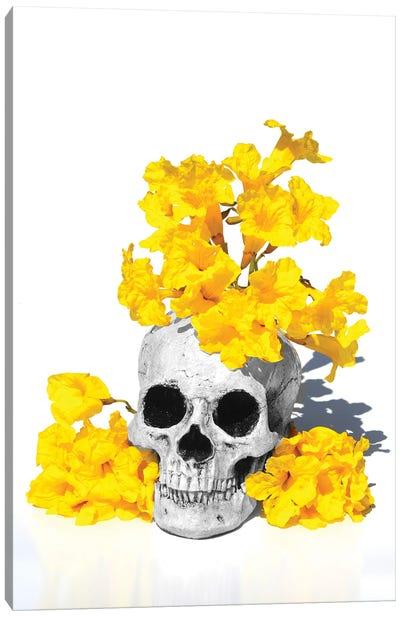 Skull& Tabebuia Black & White Canvas Art Print