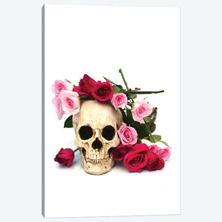 Skull & Pink & Red Roses Canvas Print #JTN104} by Jonathan Brooks Canvas Wall Art
