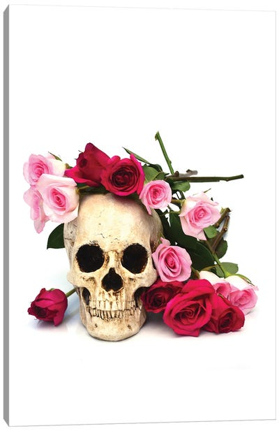 Skull & Pink & Red Roses Canvas Art Print