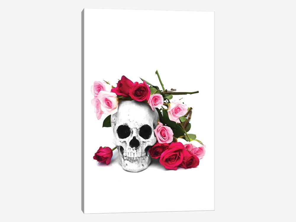Skull & Pink & Red Roses Black & White by Jonathan Brooks 1-piece Canvas Print