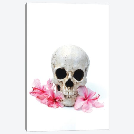 Skull & Pink Hibiscus Canvas Print #JTN106} by Jonathan Brooks Canvas Art