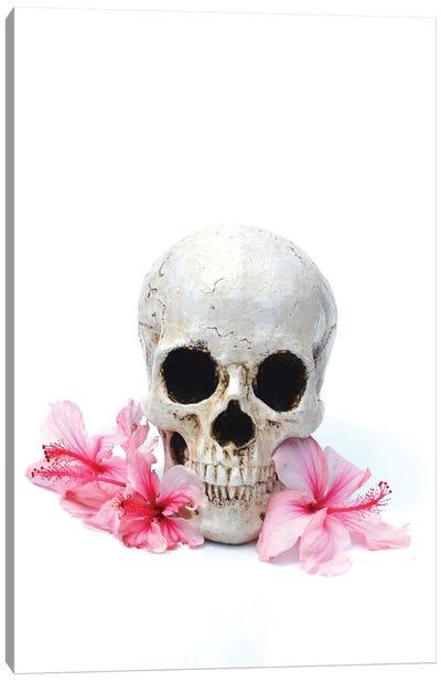 Skull & Pink Hibiscus Canvas Art Print