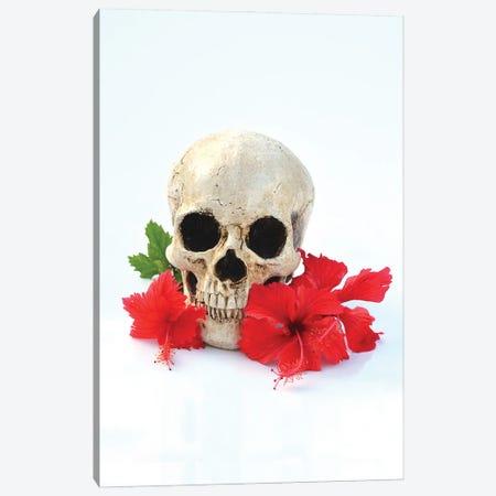Skull & Red Hibiscus Canvas Print #JTN108} by Jonathan Brooks Canvas Print