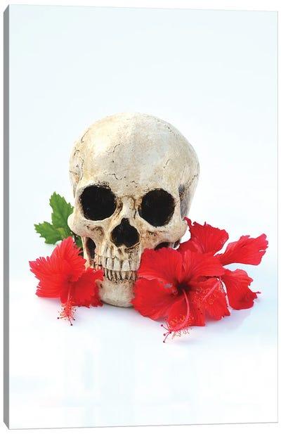 Skull & Red Hibiscus Canvas Art Print