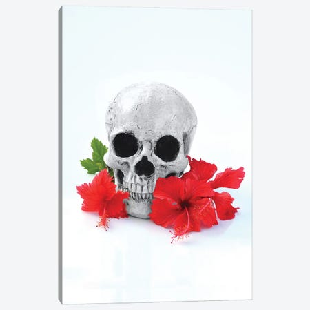 Skull & Red Hibiscus Black & White Canvas Print #JTN109} by Jonathan Brooks Canvas Art Print