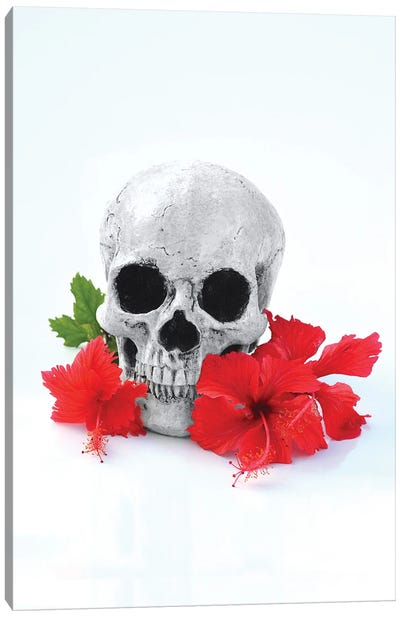 Skull & Red Hibiscus Black & White Canvas Art Print