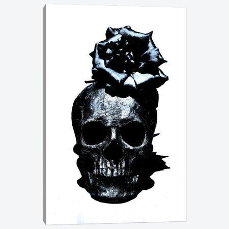 Black & Blue Skull III Canvas Print #JTN10} by Jonathan Brooks Canvas Art Print