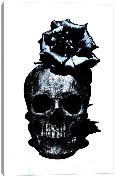 Black & Blue Skull III Canvas Art Print