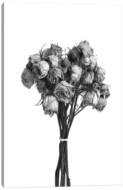 Dried Roses Black & White Canvas Art Print