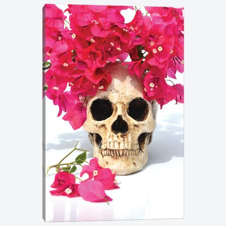Skull & Bougainvillea Canvas Print #JTN31} by Jonathan Brooks Canvas Print