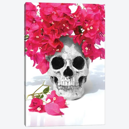 Skull & Bougainvillea Black & White Canvas Print #JTN32} by Jonathan Brooks Canvas Print